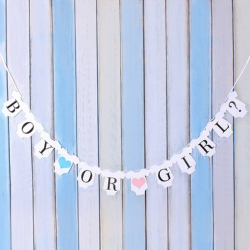 Gender Reveal Boy or Girl Baby Clothes Bunting